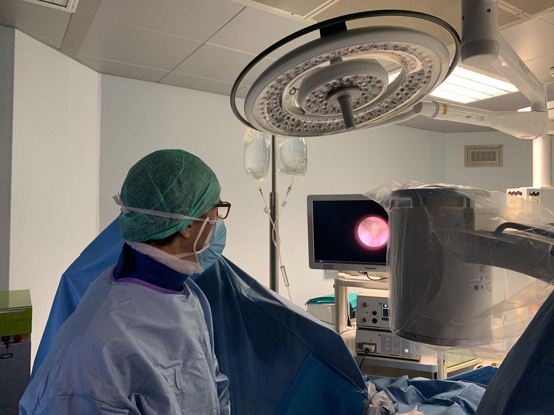 ureteroscopia Ghidini